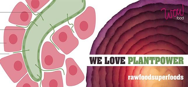 Nieuwe workshops rawfood superfoods WOWfood Arend van der Heijden
